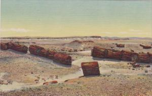 Arizona Logs In Third Forest Petrified Forest Curteich