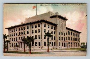 Galveston TX, Municipal Building And Auditorium, Vintage Texas Postcard