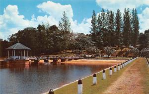 Singapore Old Vintage Antique Post Card Pierce Reservoir Unused