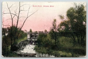 Bangor Michigan~Bridge over Black River~Rowboat in Weeds~1908 Postcard