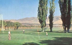 Pocatello Idaho~Municipal Golf Course~1960 Postcard