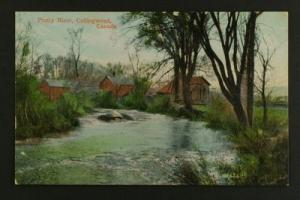 Pretty River Collingwood early 20th cent
