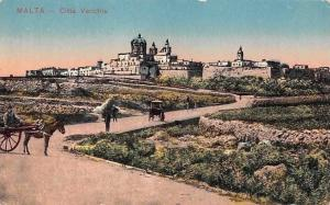 Malta - Citta Vecchia, Donkey Cart 1917