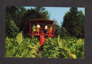 Farming Tobacco Harvester Farm Harvesting Growing Smoking Machinery Postcard