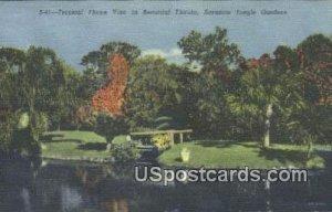Tropical Flame Vine - Sarasota Jungle Gardens, Florida FL