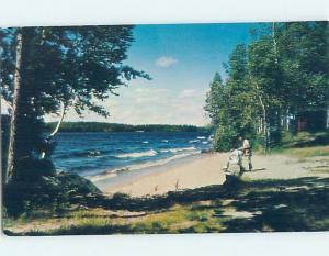 Pre-1980 BEACH SCENE Minnesota Lake By Mankato & Albert Lea & Owatonna MN G5589