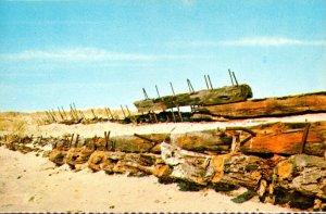 Massachusetts Cape Cod National Seashore Wooden Skeletons Ship Wrecks