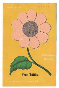Your Future Novelty Change Card Lift Petals Fortune Postcard