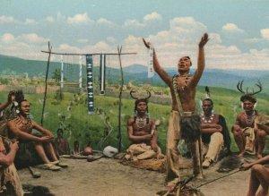 Milwaukee Public Museum Group Iroquois Wisconsin Postcard
