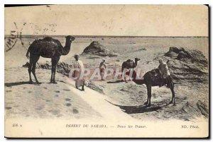 Old Postcard Sahara Desert Dunes In