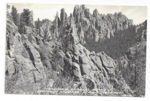 RP SD Black Hills Cathedral Spires Needles Highway Postcard