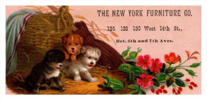 13229  Trade Card  NY City Furniture Co. Puppies in Basket