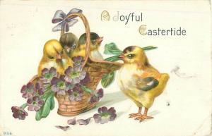 Basket of Purple Flowers and Chicks 1913 Embossed Easter Postcard USED