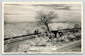 Shenandoah National Park Virginia~Skyline Drive~View Along Skyway~1950