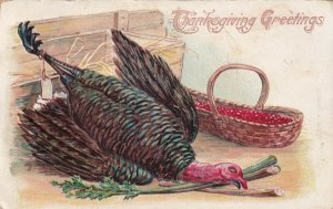THANKSGIVING, PU-1909; Greetings, Dead Wild Turkey, Woven basket with berries