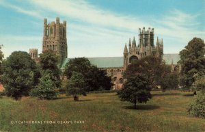 Postcard Ely Cathedral from Dean's Park England