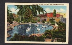 MI Ducks CLINCH PARK TRAVERSE CITY MICHIGAN POSTCARD PC