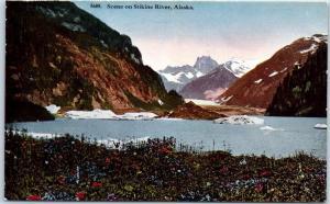1920s Alaska Postcard Bird's-Eye View Scene on Stikine River HHT Unused