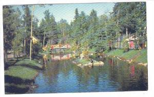 Bassin Des Oiseaux Aquatiques, Zoo De St-Felicien, Lac St-Jean, Quebec, Canad...