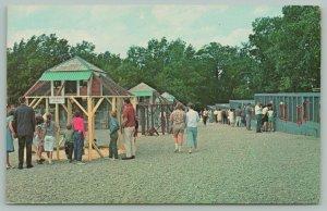 Mendon Massachusetts~Wild Animal Farm~Cages~Monkeys~Birds~Postcard~1960s