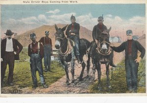 Mule driver boys coming from work , 1908