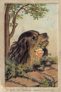 Dog Smaller than a normal postcard