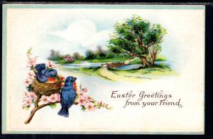 Easter Greetings Birds Scene