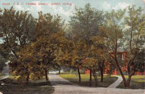 AMES IA~CAMPUS SCENERY-IOWA STATE UNIV-E T GROVE POSTCARD 1907