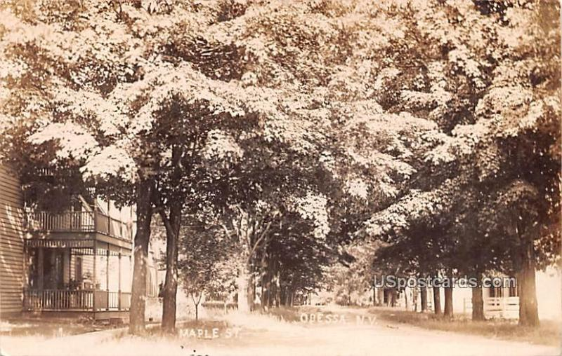 Maple Street Odessa NY Postal Used Unknown