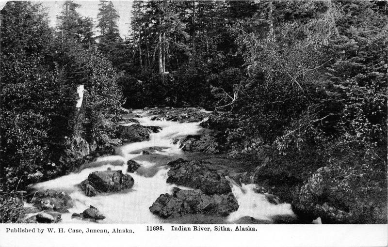 Sitka Alaska~Indian River View in Forest~c1910 WH Case Postcard