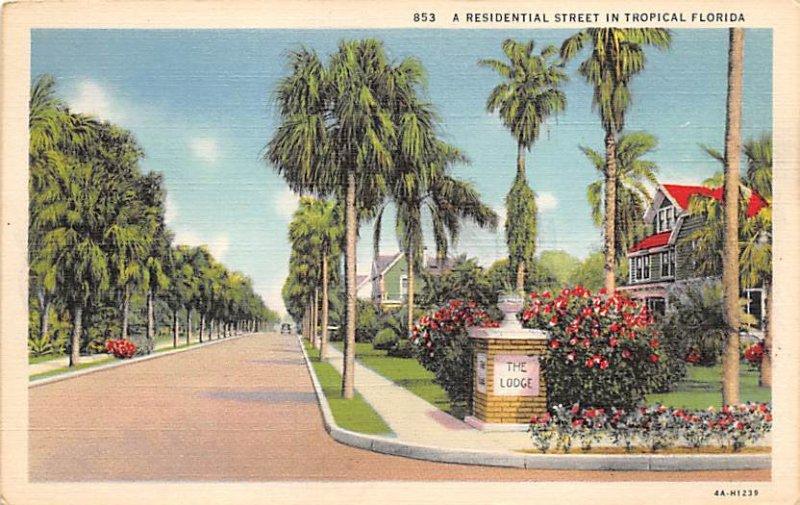 Residential Street in Florida  Misc FL