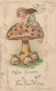 With Sincere NEW YEAR wishes , Angel on a Mushroom , 1905