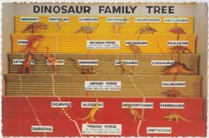 Dinosaur Family Tree, Dinosaur National Monument, unused Postcard