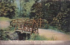 Pennsylvania Pittsburg Birdge Panther Hollow Schenley Park