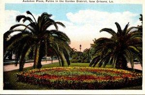 Louisiana New Orleans Audubon Place Palms In Garden District 1929