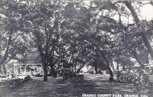 California Orange Orance County Park Real Photo