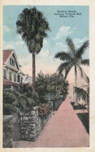 MIAMI, Florida, 1900-10s; Twelth Street, Looking Toward Bay