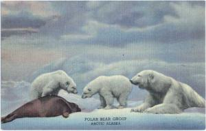 Linen of Polar Bear Group in The Denver Museum Colorado CO
