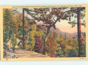 Unused Linen PARK SCENE Hot Springs National Park Arkansas AR H2198