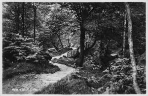 Vintage REAL PHOTO Sepia Postcard ILKLEY Hebers Ghyll YORKSHIRE