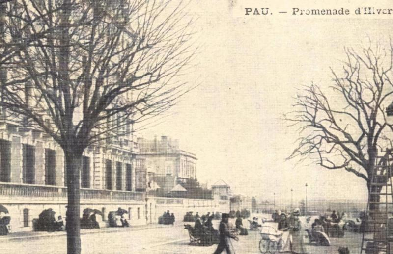 Postcard Vintage PAU Promenade d'Hiver French Reproduction