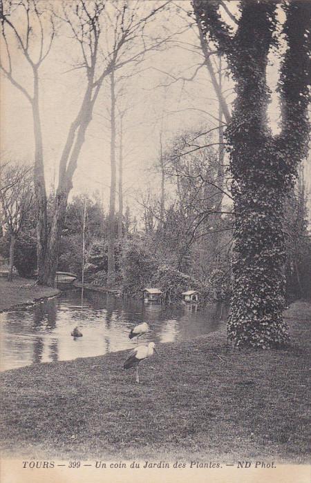 TOURS , France , 00-10s ; Un coin du Jardin des Plantes