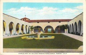 K.W Kellogg Arabian Horse Ranch Stables Pomona California Curt Teich Postcard