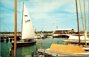 Vtg Sailboats Setting Sail from Marina Dewey Beach Delaware DE Unused Postcard