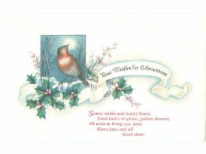 Divided-Back CHRISTMAS BIRDS SCENE Pretty Postcard W8515