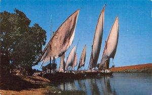 Feluccas Sailing Mahmoudieh Canal Egypt, Egypte, Africa Unused