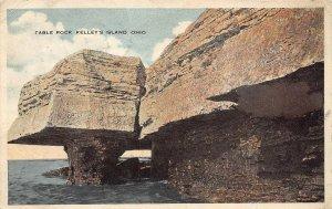 LPS77 KELLEY'S ISLAND Ohio Table Rock Postcard