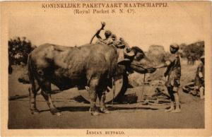 INDONESIA PC DUTCH INDIES - Indian Buffalo (a1748)