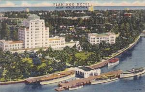 Florida Miani Beach Flamingo Hotel