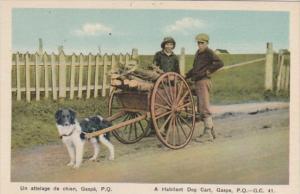 Canada Gaspe A Habitant Dog Cart